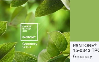GREENERY – NATURE'S NEUTRAL PANTONE 2017 COLOUR OF THE YEAR